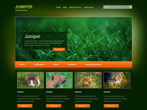 Juniper Free WordPress Theme