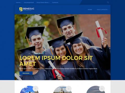 Beneduc Premium WordPress Theme