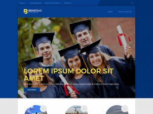 Beneduc Premium WordPress Theme