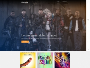 BigCinema Premium WordPress Theme