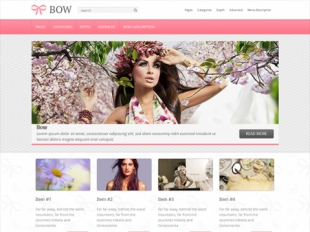 Bow Premium WordPress Theme