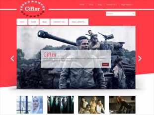 Ciflor Premium WordPress Theme