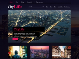 CityLife Premium WordPress Theme