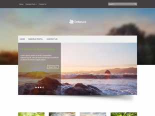 DeNature Premium WordPress Theme