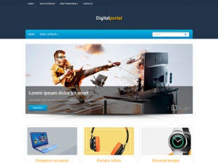 DigitalPortal Premium WordPress Theme