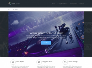 DiskJokey Premium WordPress Theme