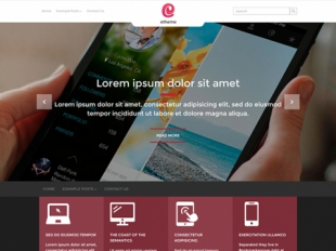 Etheme Premium WordPress Theme