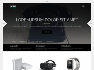 Fortune Premium WordPress Theme