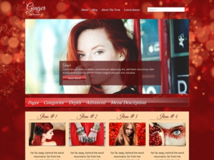 Ginger Premium WordPress Theme