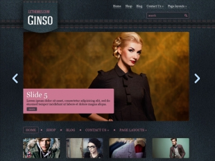 Ginso Premium WordPress Theme
