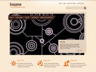 Insane Premium WordPress Theme