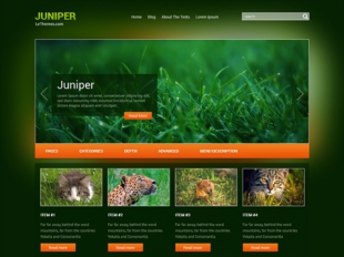 Juniper Premium WordPress Theme
