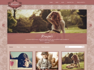Kaapeli Premium WordPress Theme