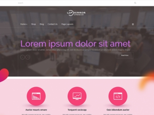 Lapmirror Premium WordPress Theme