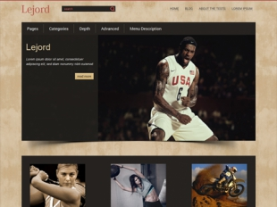 Lejord Premium WordPress Theme