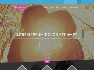 LoveStories Premium WordPress Theme