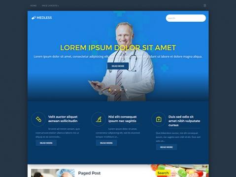 MedLess Premium WordPress Theme