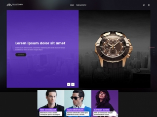 ModaTeam Premium WordPress Theme