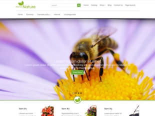 MotherNature Premium WordPress Theme
