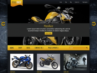 MotoRace Premium WordPress Theme