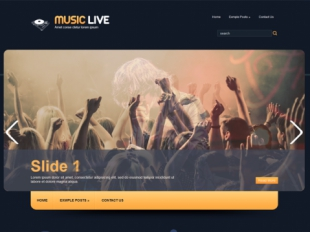 MusicLive Premium WordPress Theme