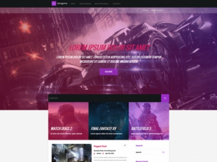 NiceGame Premium WordPress Theme