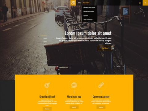 Orion Premium WordPress Theme