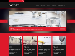 Partner Premium WordPress Theme
