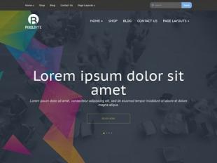 PixelByte Premium WordPress Theme