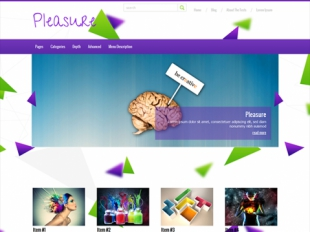 Pleasure Premium WordPress Theme