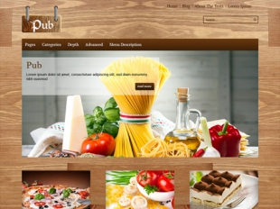 Pub Premium WordPress Theme