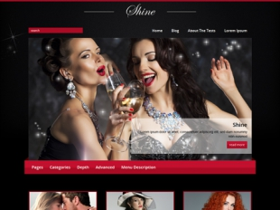Shine Premium WordPress Theme