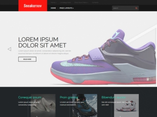 SneakerNew Premium WordPress Theme