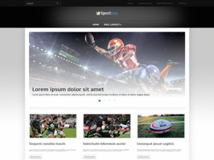 SportLine Premium WordPress Theme