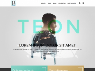 Teon Premium WordPress Theme
