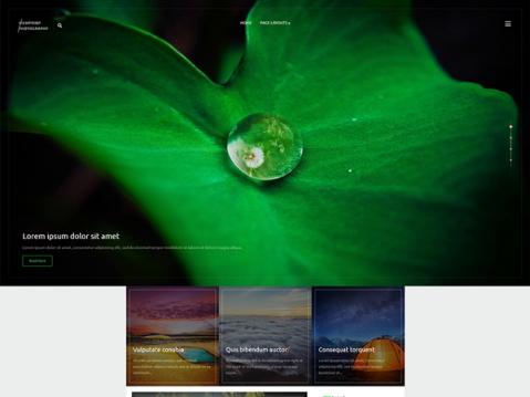 ViewPoint Premium WordPress Theme