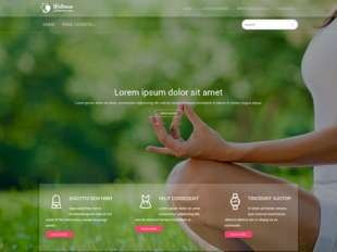 Wellness Premium WordPress Theme